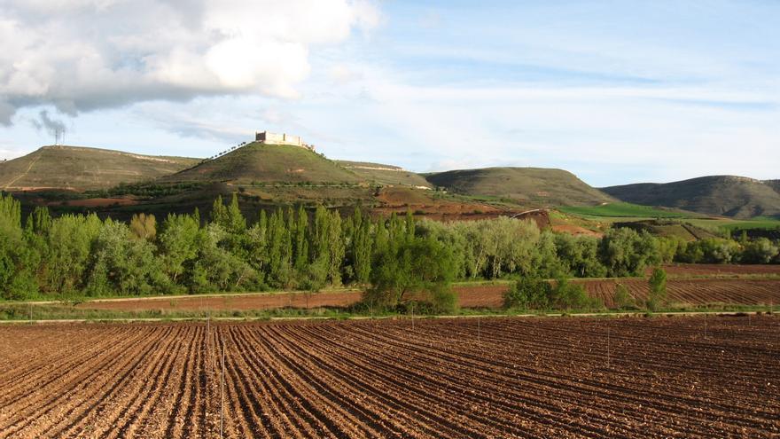 Campo de cultivo en Jadraque (Guadalajara)