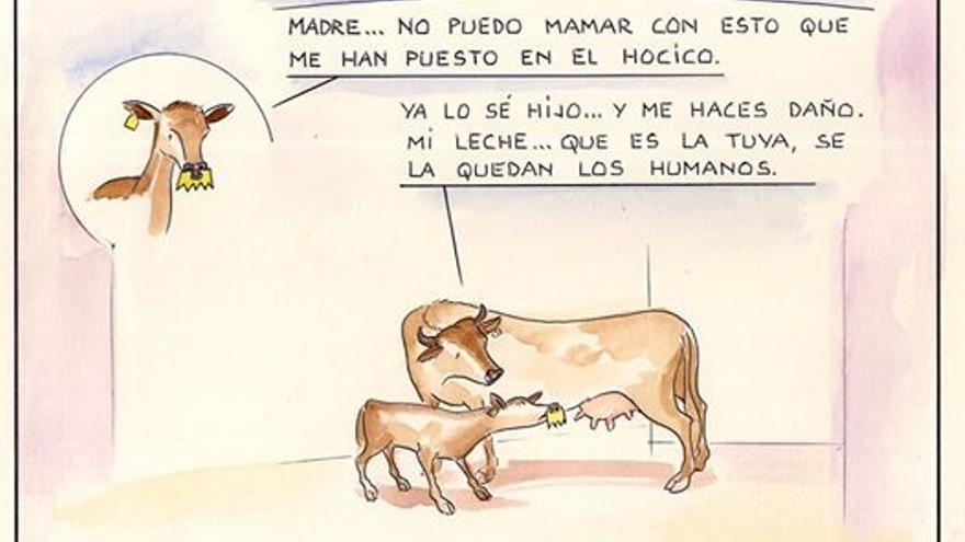 Viñeta de Paco Catalán que denuncia una práctica habitual en la industria láctea