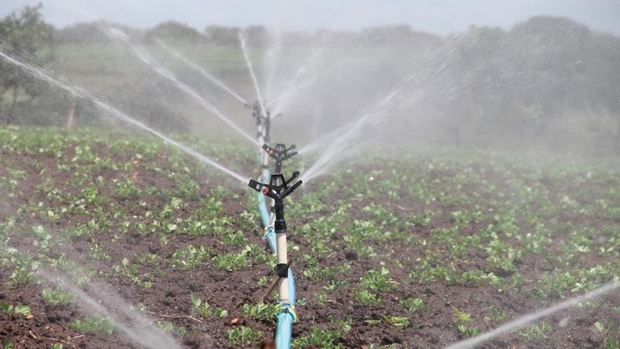 El 30% del agua depurada en la isla se reutilizará en la agricultura gracias a la nueva inversión