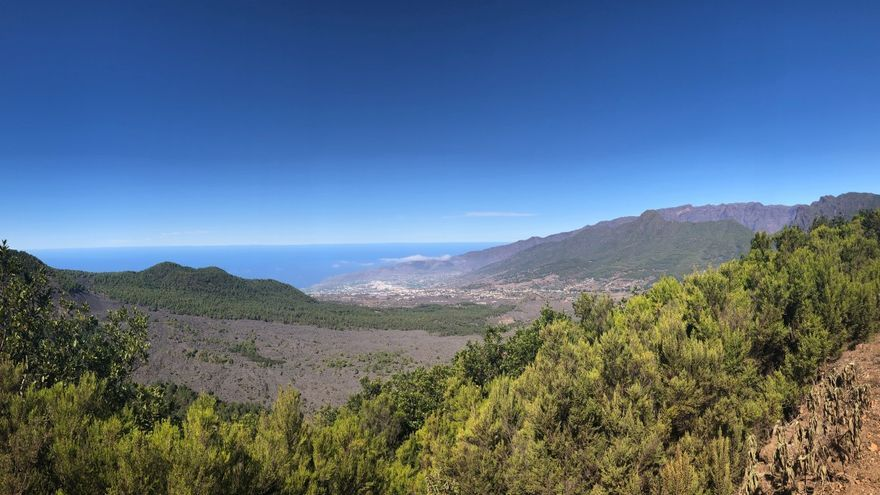 La Reserva de la Biosfera pide eliminar el pino radiata de la Hilera de la Cumbre y la Pared Vieja