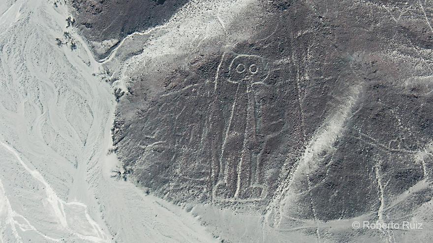 El astronauta es el nombre popular con el que se conoce a esta figura humana un tanto cabezona.