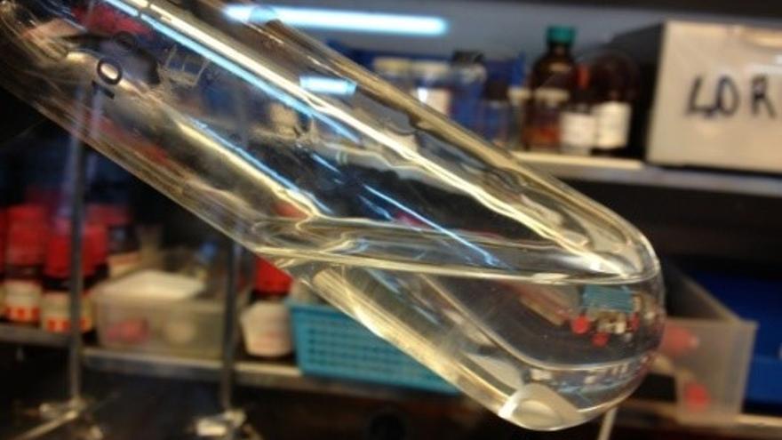Laboratorio, proceso vinculado al proyecto Biopolrex