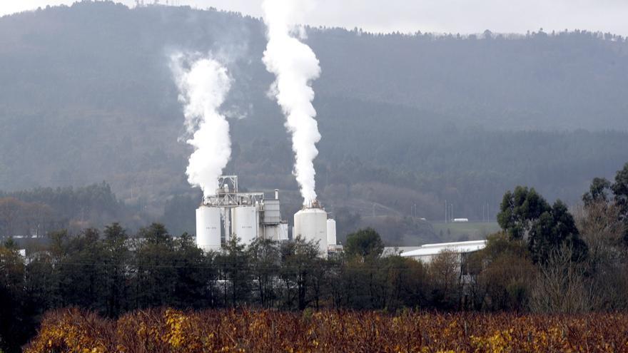 Grupo VELUX  se alía con WWF para ser neutral en carbono de por vida en 2041