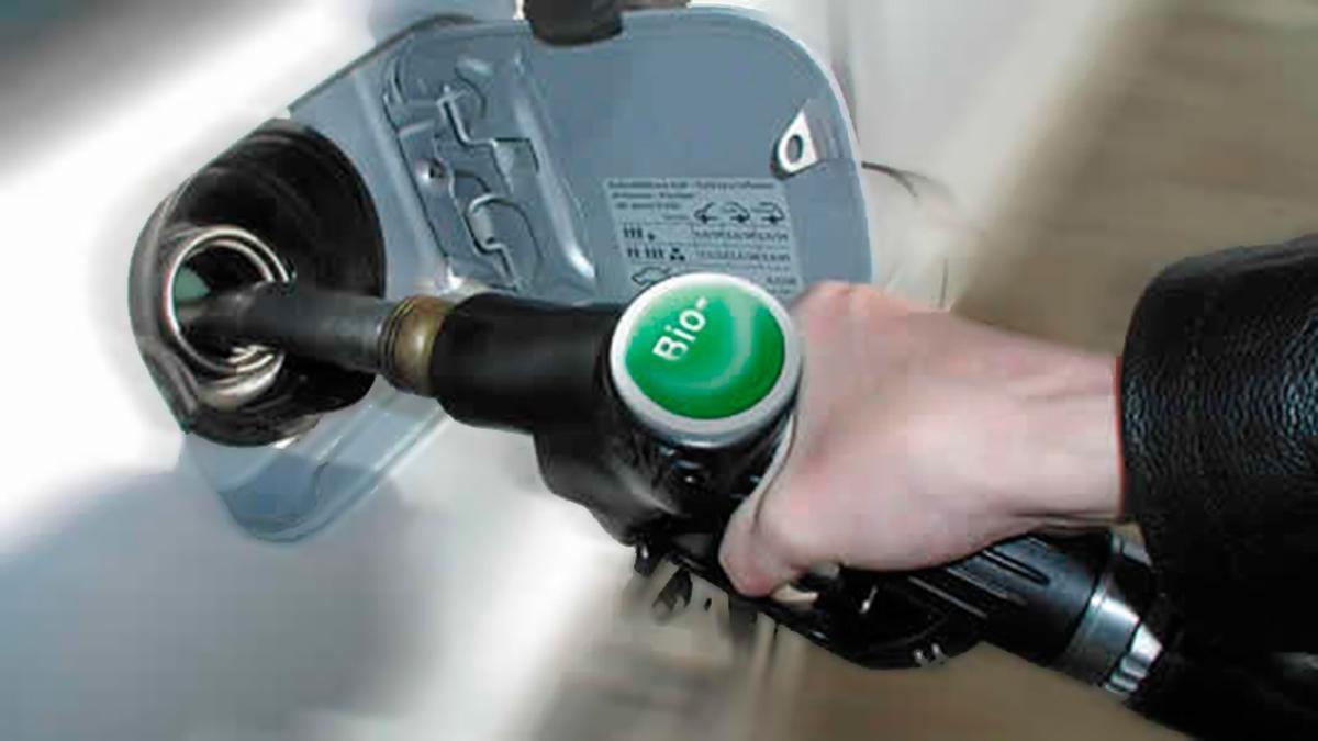 Son leyes el nuevo marco para la producción de biocombustibles y el alivio fiscal a monotributistas