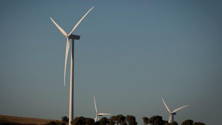 El canon autonómico a las instalaciones eólicas respeta la ley europea, según el TJUE