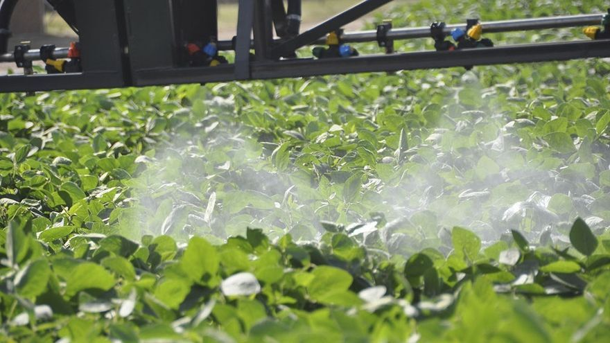 """""""Un sorbo puede matar"""": sospechas sobre Syngenta, la empresa que produce el herbicida Gramoxone"""