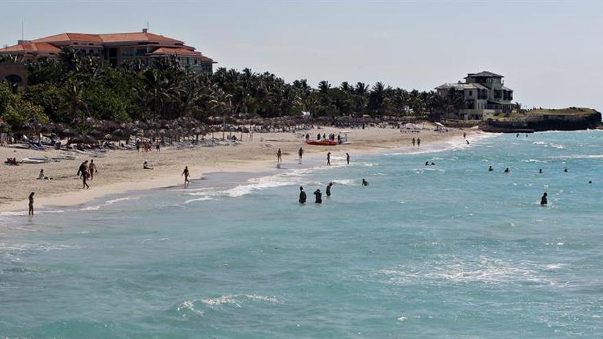 Cuba incentiva el uso de especies acuáticas que ayudan a formar arena en sus playas y dunas