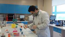 Catalunya anuncia su propio estudio de anticuerpos contra la COVID-19 en sanitarios y otros trabajadores esenciales