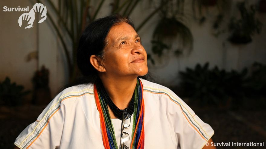 """Las montañas de la Sierra Nevada de Santa Marta, en el norte de Colombia, forman la cordillera costera más alta del mundo. Los picos nevados que se elevan por encima de las boscosas laderas, siempre cubiertas de nubes, y los ríos que nacen del deshielo de las cumbres son sagrados para el pueblo indígena arhuaco y para sus vecinos, los kogis, los arsarios y los kankuamas. Los arhuacos han vivido aquí desde hace miles de años. Para ellos, la Sierra Nevada es el corazón del mundo; se denominan a sí mismos los """"Hermanos Mayores"""" y creen que tienen una sabiduría y comprensión místicos superiores a los de otros pueblos. Leonor Zalabata, una líder arhuaco que ha trabajado sin descanso en la defensa de los arhuacos y de los derechos de los 102 pueblos indígenas de Colombia, se reunió por primera vez con Survival International durante los años 90, cuando los insurgentes de la guerrilla de izquierdas establecieron su campamento en la tierra de los arhuacos y los sometieron a un periodo de brutal violencia. Muchos líderes arhuacos fueron asesinados. A pesar del peligro constante, Leonor ha dedicado su vida a denunciar los abusos contra los indígenas de Colombia. Ha trabajado con el Grupo de Trabajo para los Pueblos Indígenas de Naciones Unidas y con el Foro Permanente para Cuestiones Indígenas de la ONU. La Sierra Nevada de Santa Marta (…) es el corazón del mundo, dice. Aquí es donde nuestros espíritus descansan y permanecen. Cuando una niña nace, en nuestra cultura decimos que la montaña ríe y los pájaros lloran./©Survival International"""