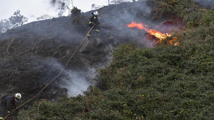 La cifra de incendios y el área afectada en 2015, inferior a la media de la última década