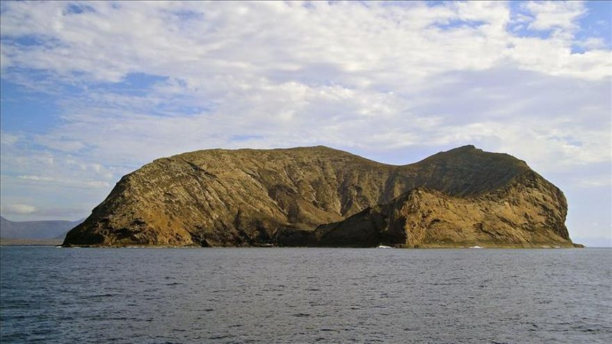 WWF exige más vigilancia contra el expolio en el archipiélago Chinijo, Lanzarote