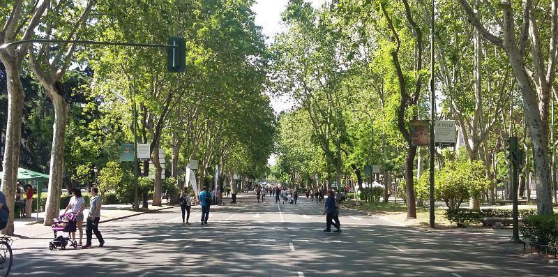 Imagen del Paseo del Prado sin coches