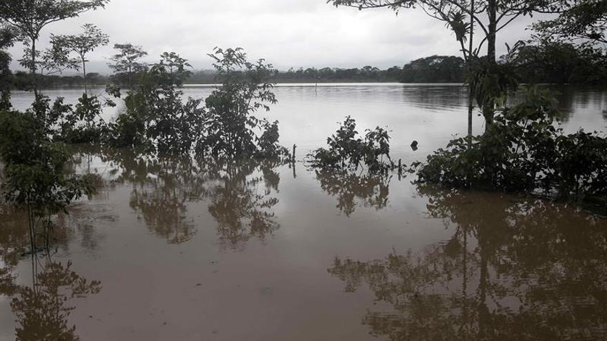 Ocho muertos por las lluvias e inundaciones que afectan al sur de Tailandia