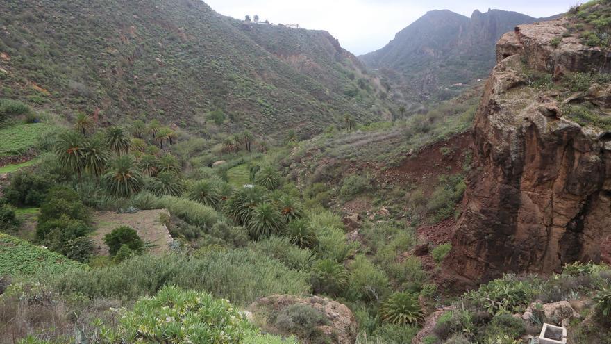 Barranco de Tirajana a su paso por Rosiana y por Taidía (ALEJANDRO RAMOS)