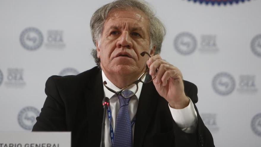 """Almagro califica de """"encomiable"""" la reducción de cultivos de coca en Colombia"""