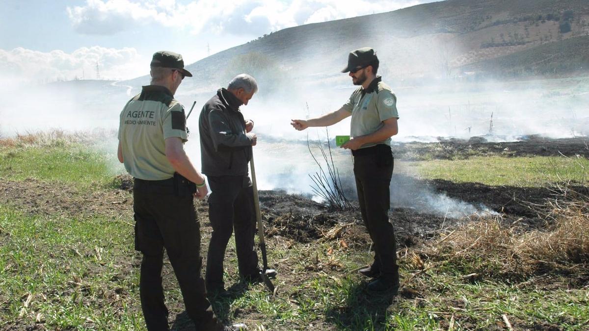 Una quema en un terreno forestal.