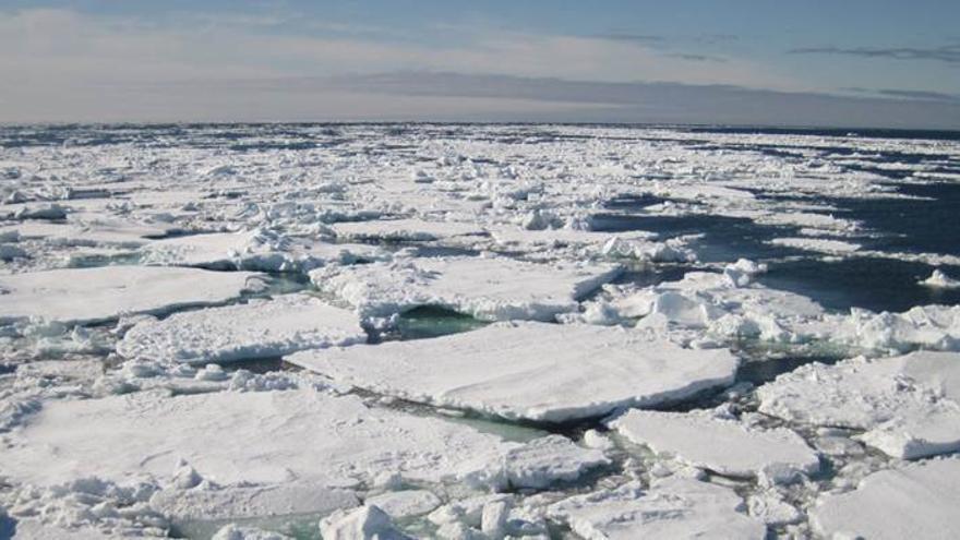 Capa de hielo en el océano Ártico / Carlos Duarte.