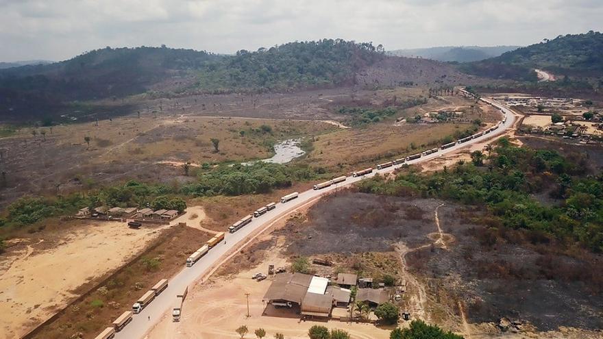 Hilera de camiones en el Amazonas / IA.