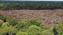 Latinoamérica busca una respuesta a la crisis climática en el Brasil de Bolsonaro