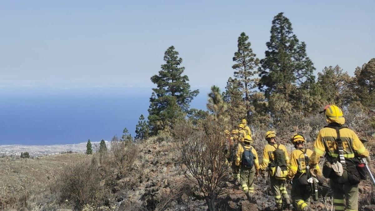 Brigadas forestales en el incendio de Arico. (TWITTER @AT_BRIF)