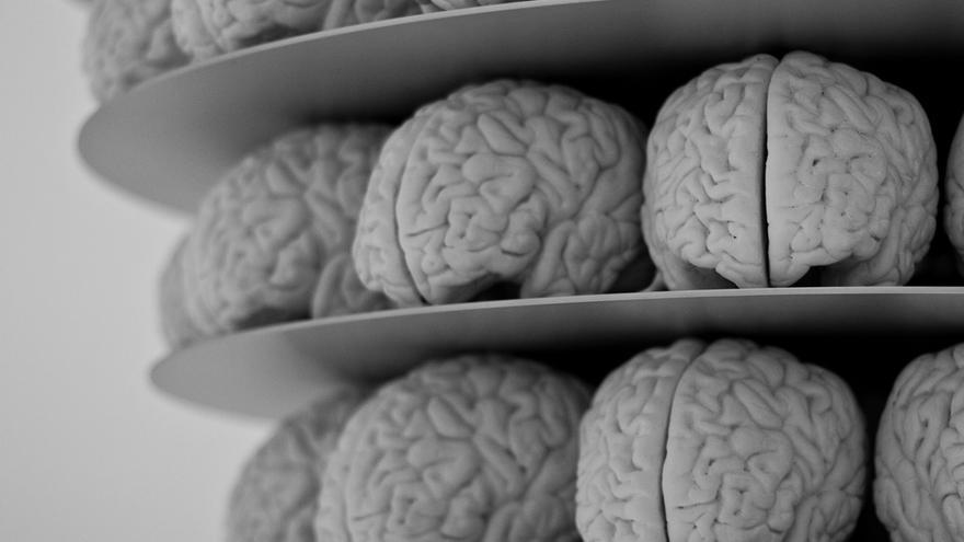 Las ideas perdidas en nuestro cerebro podrían ser rescatadas por este asistente cognitivo