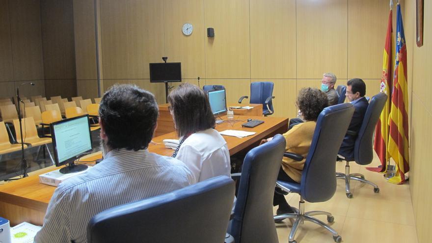 Videoconferencia celebrada este miércoles en el juzgado de guardia de detenidos en València.