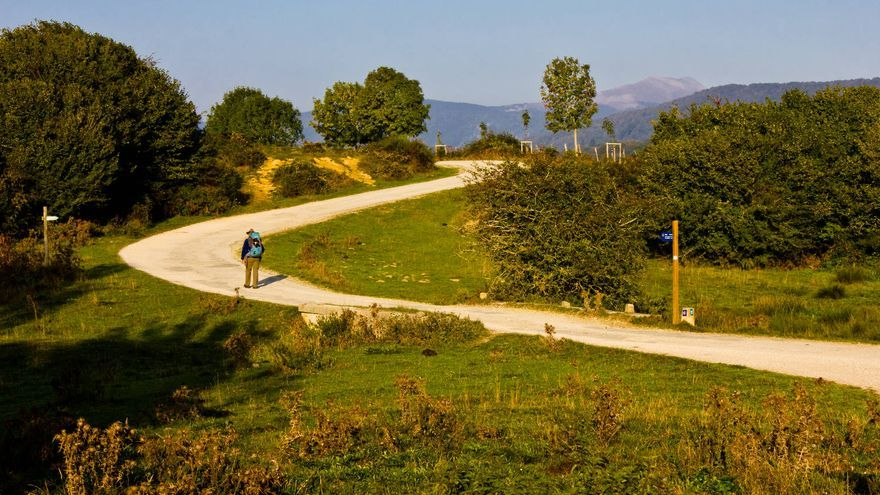 Los prados se alternan con zonas boscosas en el tramo del Camino de Santiago entre Burguete y Espinal.