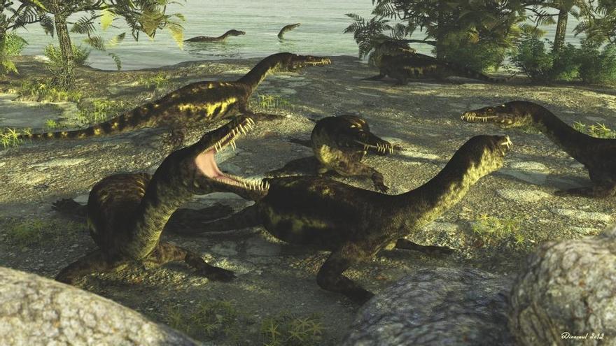 Imagen del blog del Grupo de Biología Evolutiva de la UNED