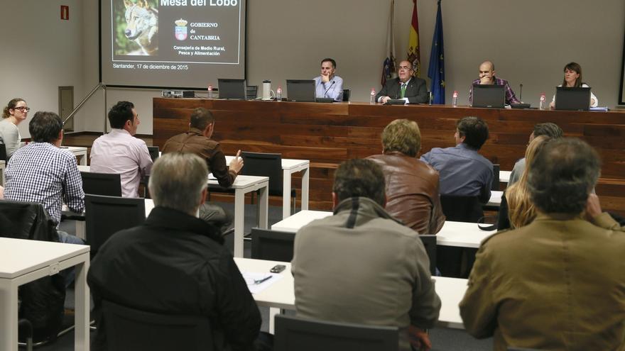El Plan de Gestión del Lobo en Cantabria podría entrar en vigor la próxima primavera