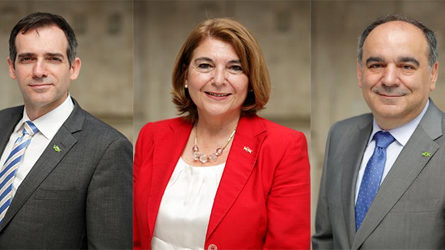 Juan José Liarte, María Isabel Campuzano y Francisco Carreras, diputados de Vox suspendidos de de afiliiacñon