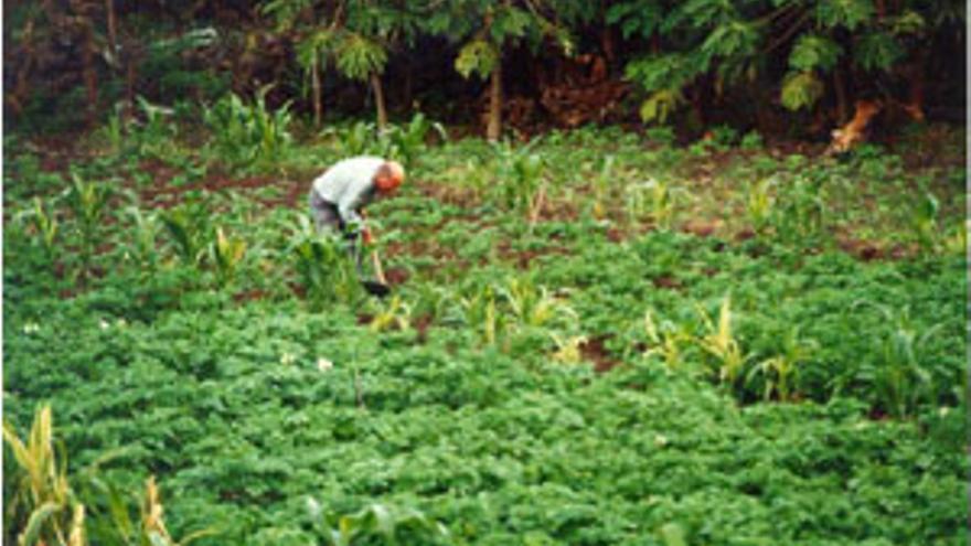 Los agricultores exigen medidas ante la crisis