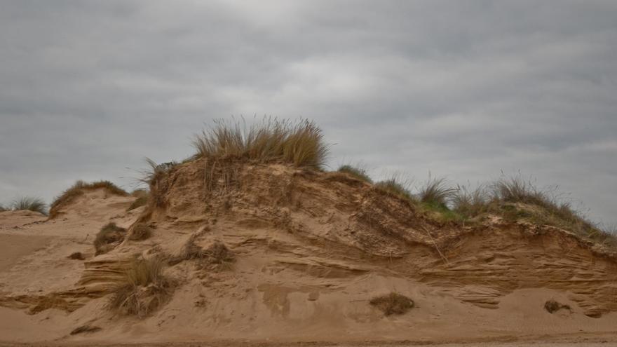 El Gobierno aprueba el convenio para desarrollar un proyecto europeo de recuperación de sistemas dunares