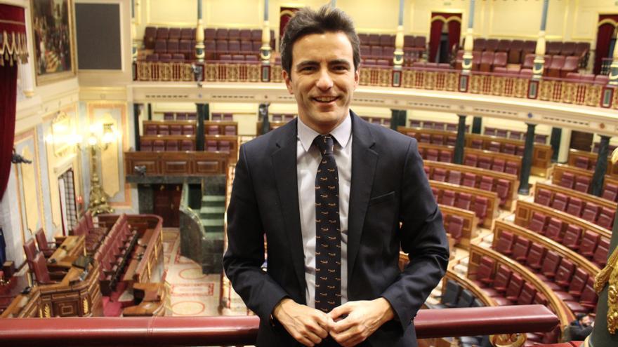 El diputado del PSOE de Cantabria, Pedro Casares, en el Congreso.
