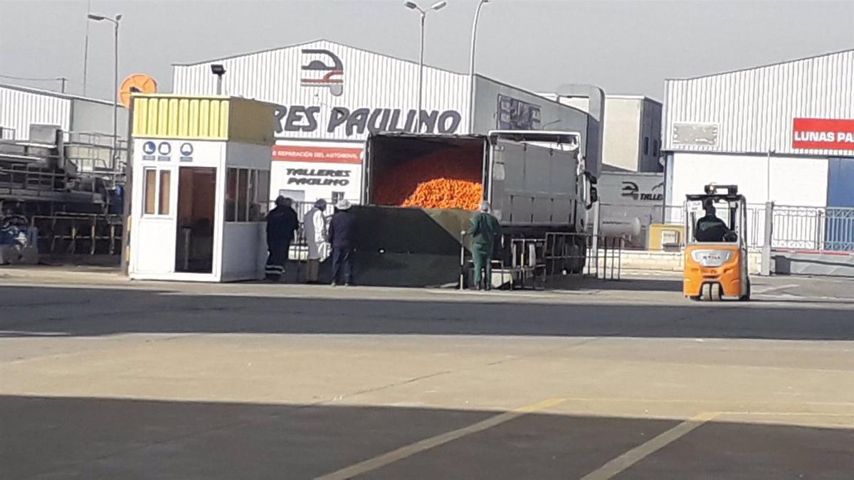 Factoría de Zumos Palma