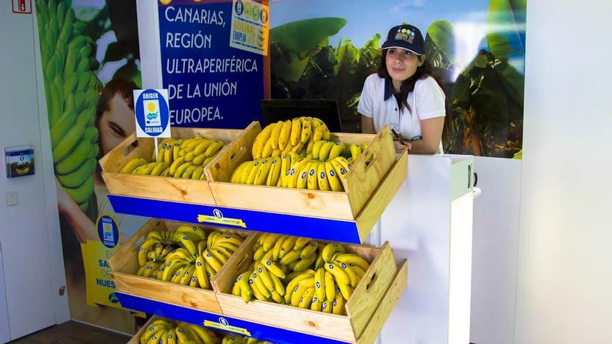 En la imagen, expositor de plátanos en el aula móvil.