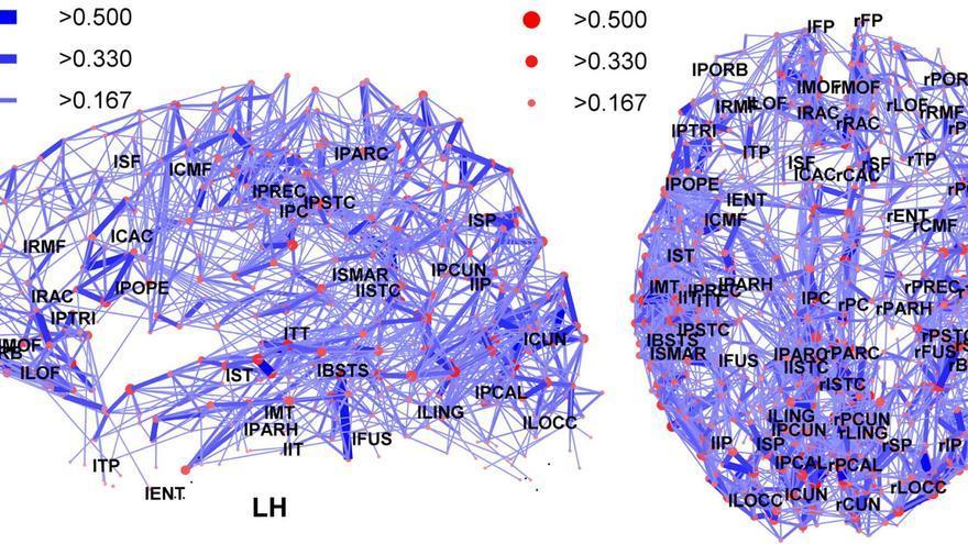 Estimular cada zona del cerebro puede ayudar a corregir una patología determinada