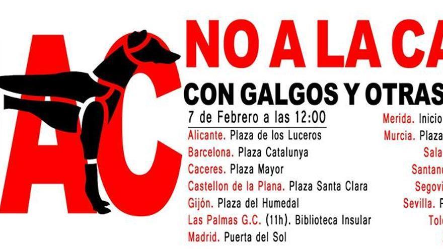 Cartel de las manifestaciones contra la caza que la Plataforma NAC convoca este domingo en quince ciudades españolas