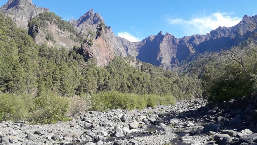 Arroyo del Parque Nacional de La Caldera de Taburiente, este jueves, 21 de marzo.