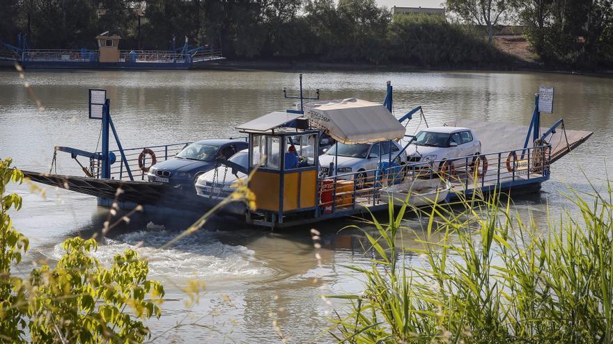 La lucha contra el mosquito del virus del Nilo empieza al anochecer