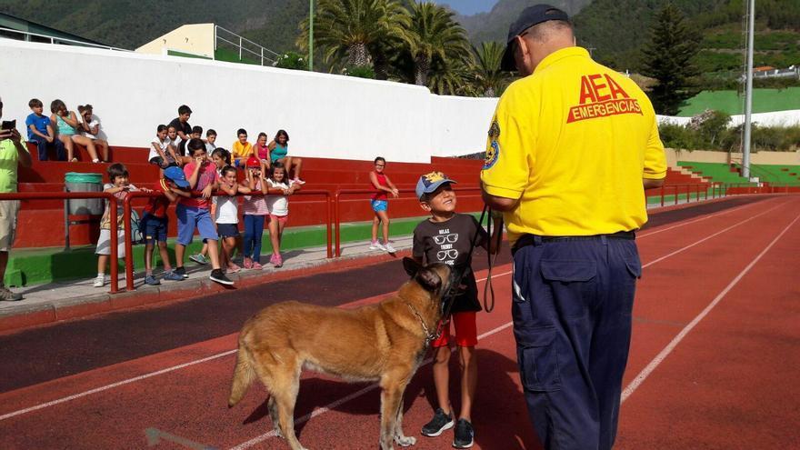 En la imagen, actividad con perros guía desarrollada en el 'Campus urbano de verano' con la colaboración de  Ayuda en Emergencias Anas (AEA).