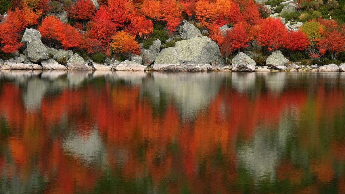 Colores de otoño en la Laguna Negra de Soria.