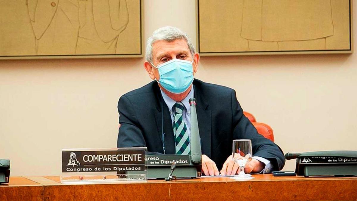 Pérez Tornero, en el Congreso