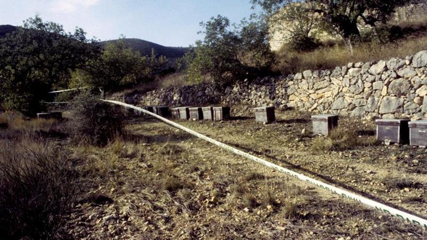 Netflix dedica al crimen de Alcàsser su primera serie documental española