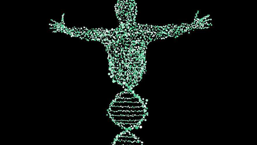 deporte modifica genes