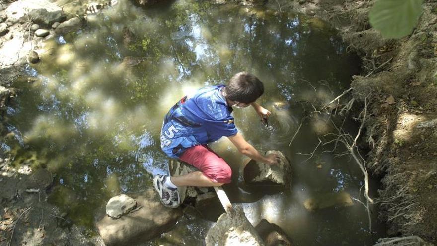 La Naturaleza ayuda a los niños a afrontar las situaciones de estrés