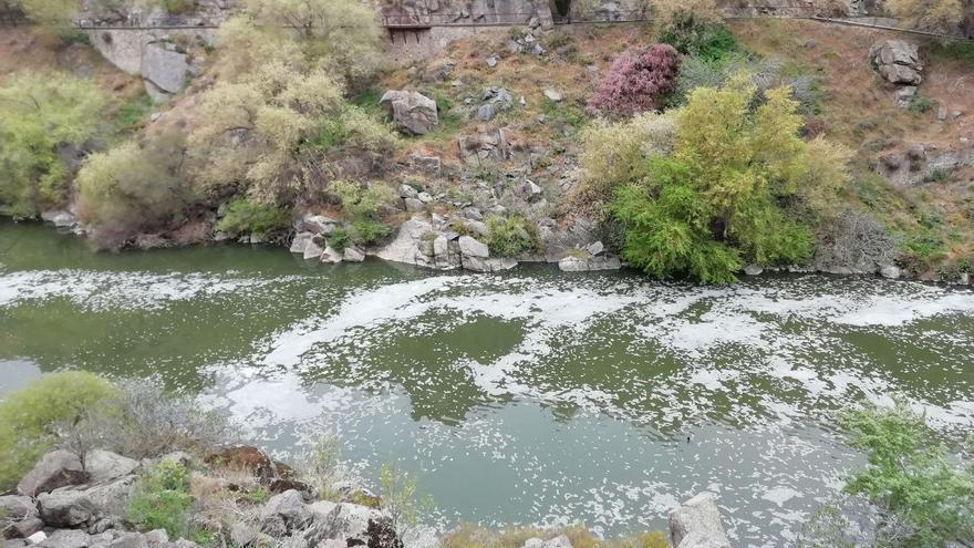 La aparición de espumas en el río Tajo a su paso por Toledo es un episodio habitual
