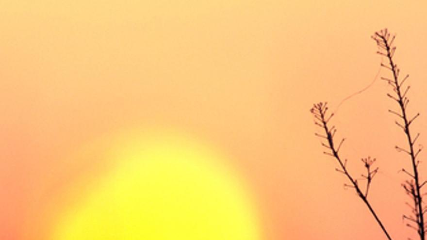 Sol cambio climático calentamiento greenpeace desierto sequía