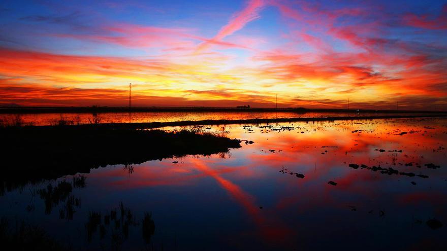 Puesta de sol en la marisma del Guadalquivir. / Maribel Olivares