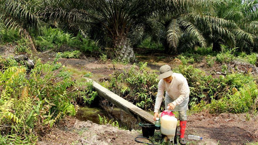 Una mujer maneja químicos sin protección en la PT ABM, en la isla indonesia de Sumatra. / Laura Villadiego