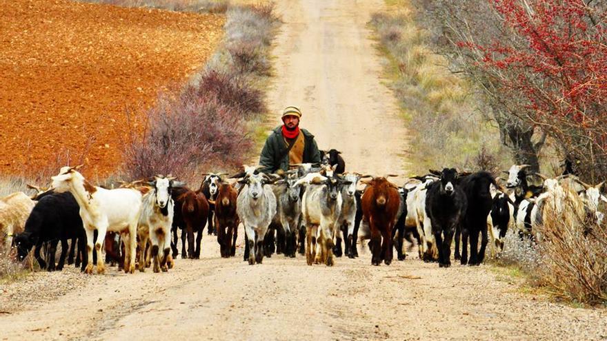 Rodrigo González FOTO: Facebook La cabra tira al monte